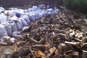 Sorting waste at the temporary landfill
